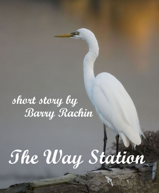 The Way Station  by  Barry Rachin