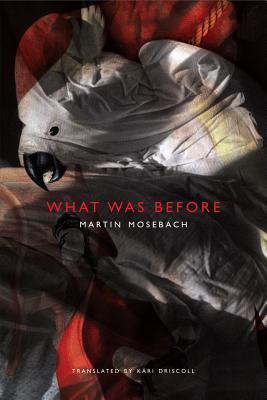What Was Before Martin Mosebach