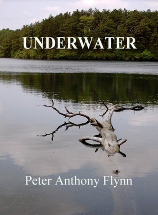 Immutable  by  Peter Anthony Flynn