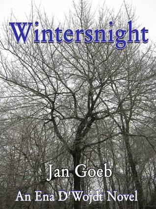 Wintersnight  by  Jan Goeb