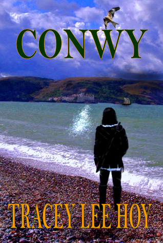 Conwy  by  Tracey Lee Hoy