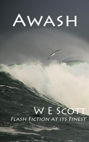 Awash  by  Wendy Scott