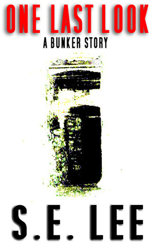 One Last Look: a postapocalyptic YA short story (Bunker Story #1) S.E. Lee