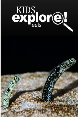 Eels - Kids Explore: Animal Books Nonfiction - Books Ages 5-6  by  Kids Explore!