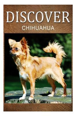 Chihuahua - Discover: Early Readers Wildlife Photography Book Discover Press