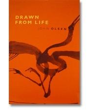 Drawn from Life  by  John Olsen