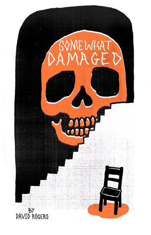 Somewhat Damaged  by  David              Rogers