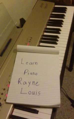 How To Play Piano  by  Rafe Michaels