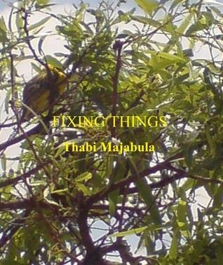 Fixing Things  by  Thabi Majabula