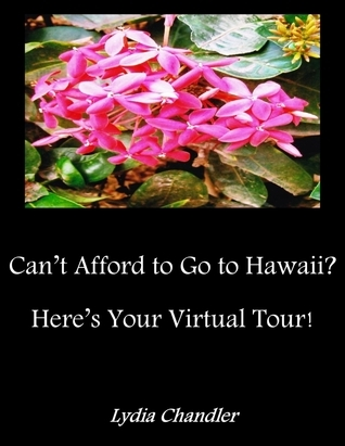 Cant Afford To Go To Hawaii? Heres Your Virtual Tour!  by  Lydia Chandler