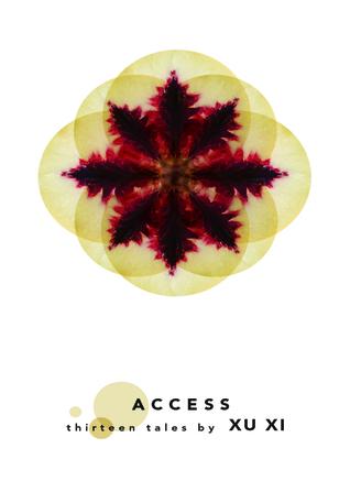 Access: Thirteen Tales Xu Xi
