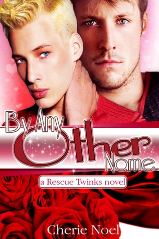 A Rescue Twinks Novel: By Any Other Name Cherie  Noel