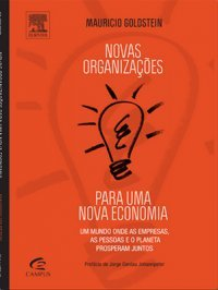 Novas Organizações Para Uma Nova Economia  by  Mauricio Goldstein