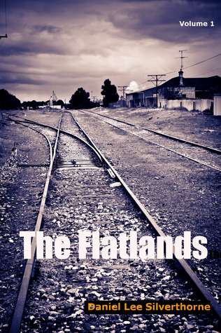 The Flatlands Daniel Lee Silverthorne