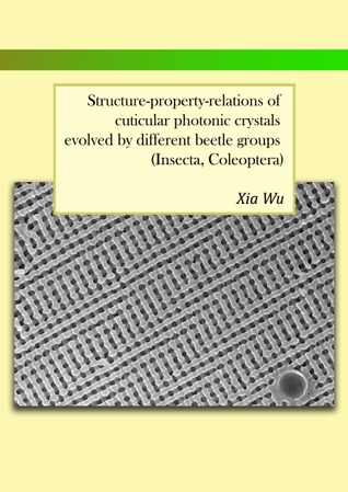 Structure-property-relations of cuticular photonic crystals evolved  by  different beetle groups by Xia Wu