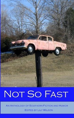 Not So Fast  by  Lily Wilson