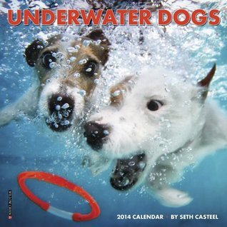 Underwater Dogs Calendar  by  NOT A BOOK