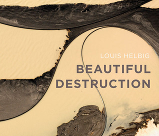 Beautiful Destruction  by  Louis Helbig