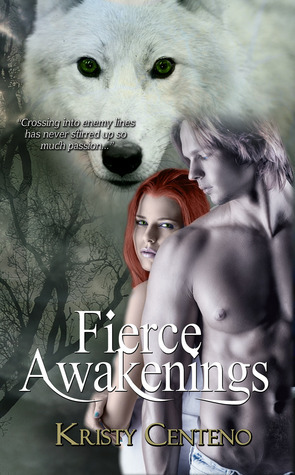 Fierce Awakenings Kristy Centeno