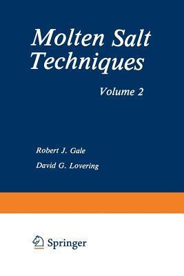 Molten Salt Techniques: Volume 2  by  Robert J Gale