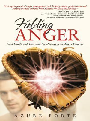 Fielding Anger: Field Guide and Tool Box for Dealing with Angry Feelings  by  Azure Forte