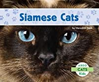 Siamese Cats Meredith Dash