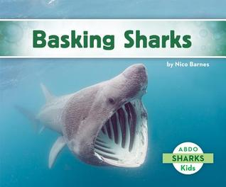 Basking Sharks  by  Nico Barnes