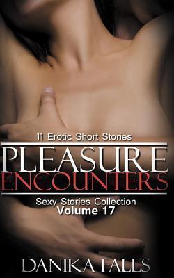Pleasure Encounters: 11 Erotic Short Stories  by  Danika Falls