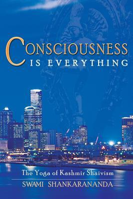 Consciousness Is Everything: The Yoga of Kashmir Shaivism  by  Swami Shankarananda