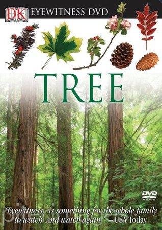 Tree DK Publishing