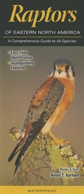 Raptors of Eastern North America: A Comprehensive Guide to All Species Kevin T Karlson