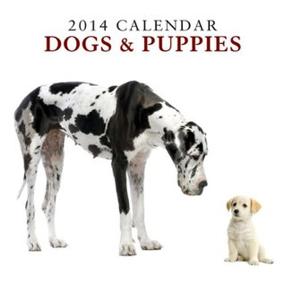 2014 Calendar: Dogs & Puppies: 12-Month Calendar Featuring Delightful Photographs of Dogs and Puppies NOT A BOOK