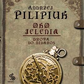 Droga do Nidaros (Oko Jelenia, #1)  by  Andrzej Pilipiuk