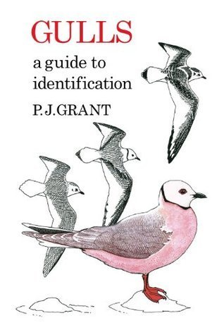 Gulls: A Guide To Identification P.J. Grant