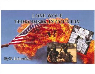 LONE WOLF TERRORISTS, IN COUNTRY (Private Investigators, Dick Burton and Jake Harper, Series)  by  B. RAINWATER