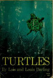Turtles  by  Lois and Louis Darling