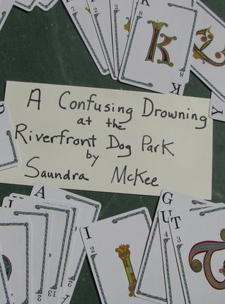 A Confusing Drowning at the Riverfront Dog Park  by  Saundra McKee