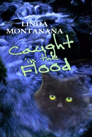 Caught in the flood  by  Linda Montanana