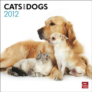 Cats & Dogs 2012 Square 12X12 Wall Calendar  by  NOT A BOOK