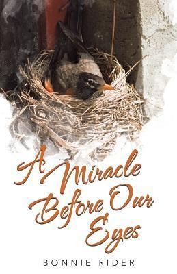 A Miracle Before Our Eyes  by  Bonnie Rider