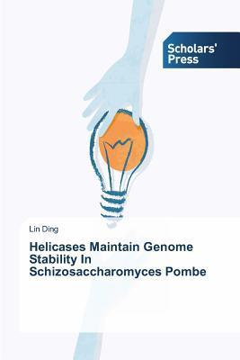 Helicases Maintain Genome Stability in Schizosaccharomyces Pombe Ding Lin