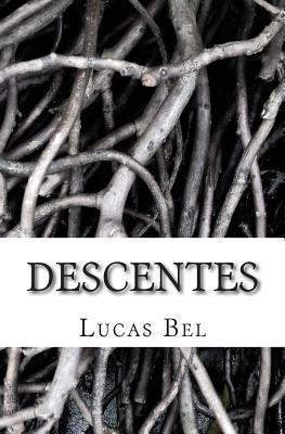 Descentes  by  Lucas Bel