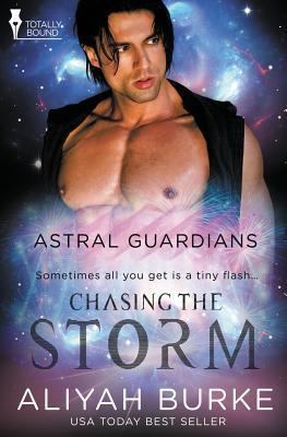 Astral Guardians: Chasing the Storm  by  Aliyah Burke