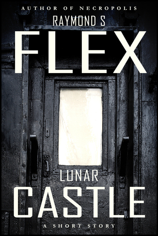 Lunar Castle  by  Samuel Flex