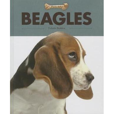 Beagles: Dog Books for Kids
