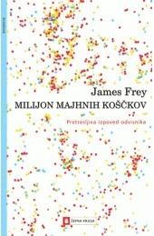 Milijon majhnih koščkov James Frey