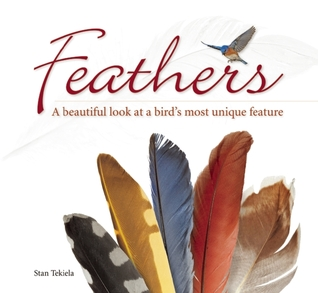 Feathers: A Beautiful Look at a Birds Most Unique Feature Stan Tekiela