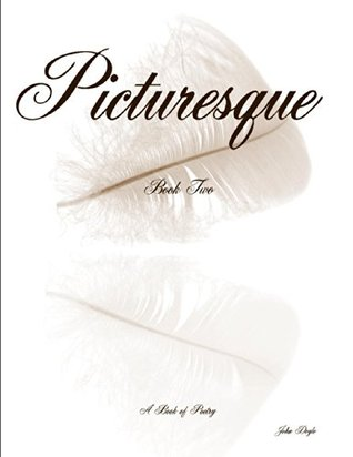 Picturesque Book Two  by  John Doyle