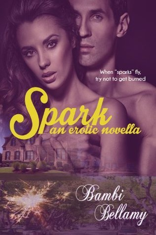 Spark: An Erotic Novella (PussyWillow Falls: Swingers Paradise Book 1)  by  Bambi Bellamy