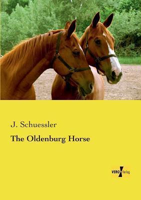 The Oldenburg Horse J Schuessler